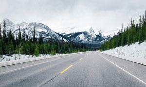 雪山下树林和公路景观摄影图片