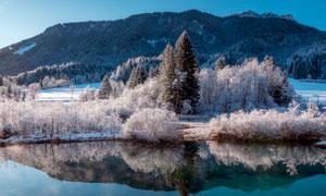 冬季山林中的雾凇景观摄影图片