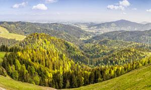 连绵起伏的山林全景图摄影图片