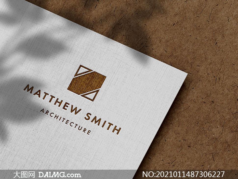 光影下的棕色质感标志图案样机模板