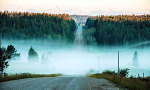 早晨雾气朦胧的公路景观摄影图片