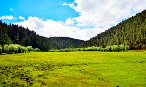 蓝天白云下的山林和草地摄影图片