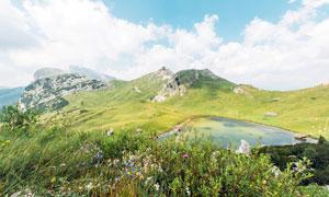 山顶花草从和湖泊景观摄影图片