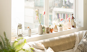 沙发与窗台上的装饰品摄影高清原片