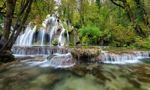 森林中的小溪瀑布高清摄影图片