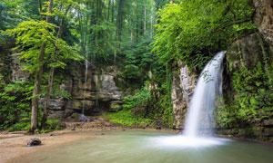 森林中的小溪瀑布和流水摄影图片