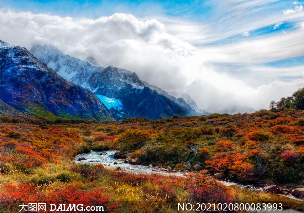 山坡草地上的小溪流水摄影图片