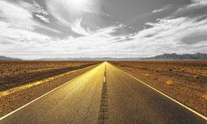 陽光下的金色公路攝影圖片
