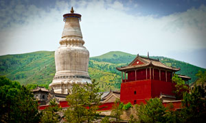 五台山白塔和寺庙建筑摄影图片