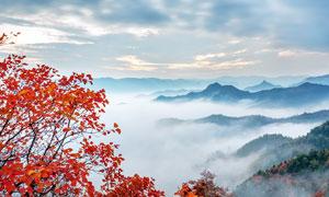 秋季大山中的云雾摄影图片