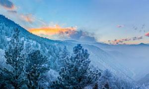 冬季大山中的雾凇景观摄影图片