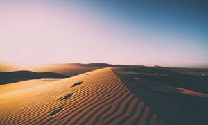 蓝天下的沙丘和沙漠景观摄影图片