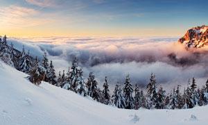 清晨山頂美麗的雪景全景圖攝影圖片