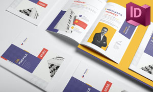 公司介绍与项目展示等画册版式模板
