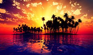 夕阳下海岛上的椰树林剪影摄影图片