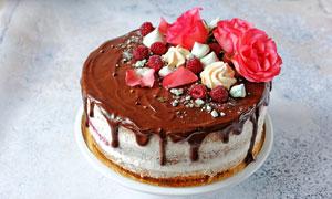 配花的巧克力蛋糕摄影图片
