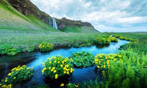 田野瀑布和溪流攝影圖片