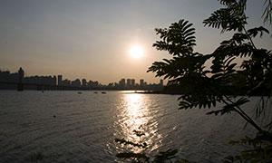 城市建筑群與湖泊風光攝影原片素材