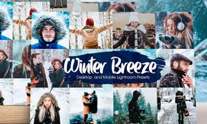 15款冬季外景人像冷色藝術效果LR素材