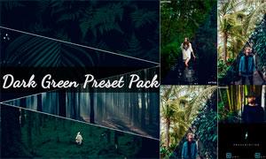 10款樹林照片暗綠色藝術效果LR預設