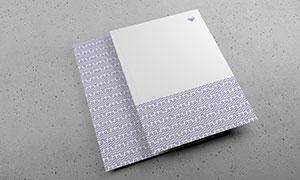卡片纸张内容显示效果模板分层素材