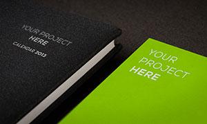 书籍与纸上的标志效果展示模板素材