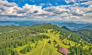 山顶美丽的森林航拍图摄影图片