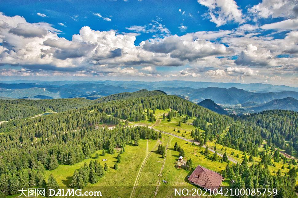 山頂美麗的森林航拍圖攝影圖片