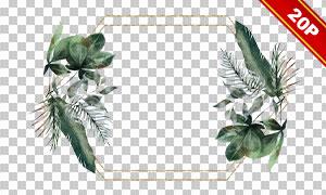 花朵叶子元素组合边框免抠高清素材