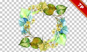 水彩创意花朵绿叶及边框等免抠素材