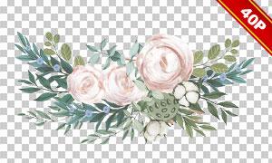 鲜花绿叶藤蔓元素免抠高清图片素材