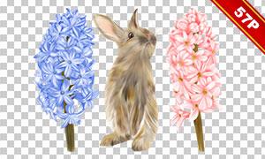 花朵兔子等复活节免抠高清图片素材