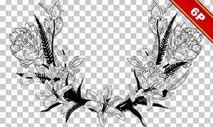 手绘花朵植物藤蔓边框免抠图片素材