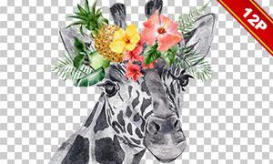 花草元素装饰动物水彩创意免抠素材