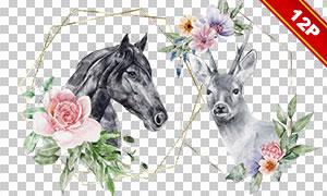 花草动物装饰边框水彩免抠图片素材