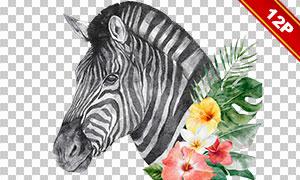 水彩手绘效果花朵动物创意免抠素材