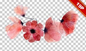 水彩手绘风格植物花朵主题免抠素材