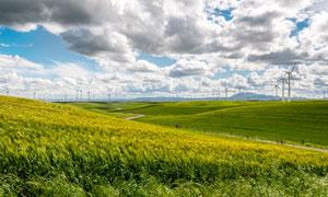 田园农田中的风车景观摄影图片