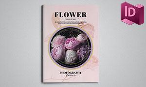 花卉植物品鑒圖冊版式設計模板素材