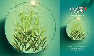 中國傳統小滿節氣活動海報PSD素材