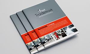 公司企業畫冊版式設計模板源文件V05