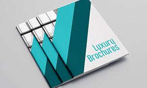 公司企業畫冊版式設計模板源文件V13