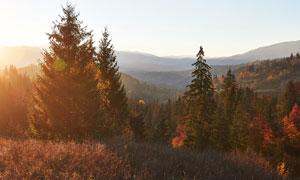 秋季山林美麗的日出景觀攝影圖片