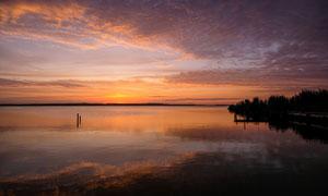 傍晚湖中的木樁景觀攝影圖片