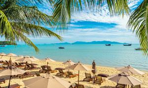 海邊度假村中的沙灘靠椅攝影圖片