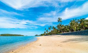 藍天白云下的海邊沙灘和椰樹林攝影圖片