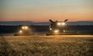 夜间在农场中收割的收割机摄影图片