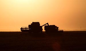 傍晚农场中的农机剪影摄影图片
