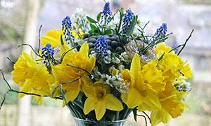 在玻璃瓶里的多种鲜花摄影高清图片