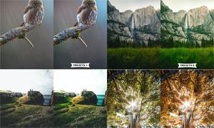 10款外景照片唯美艺术效果LR预设